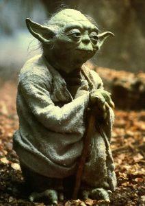 union cosmos maestro Yoda